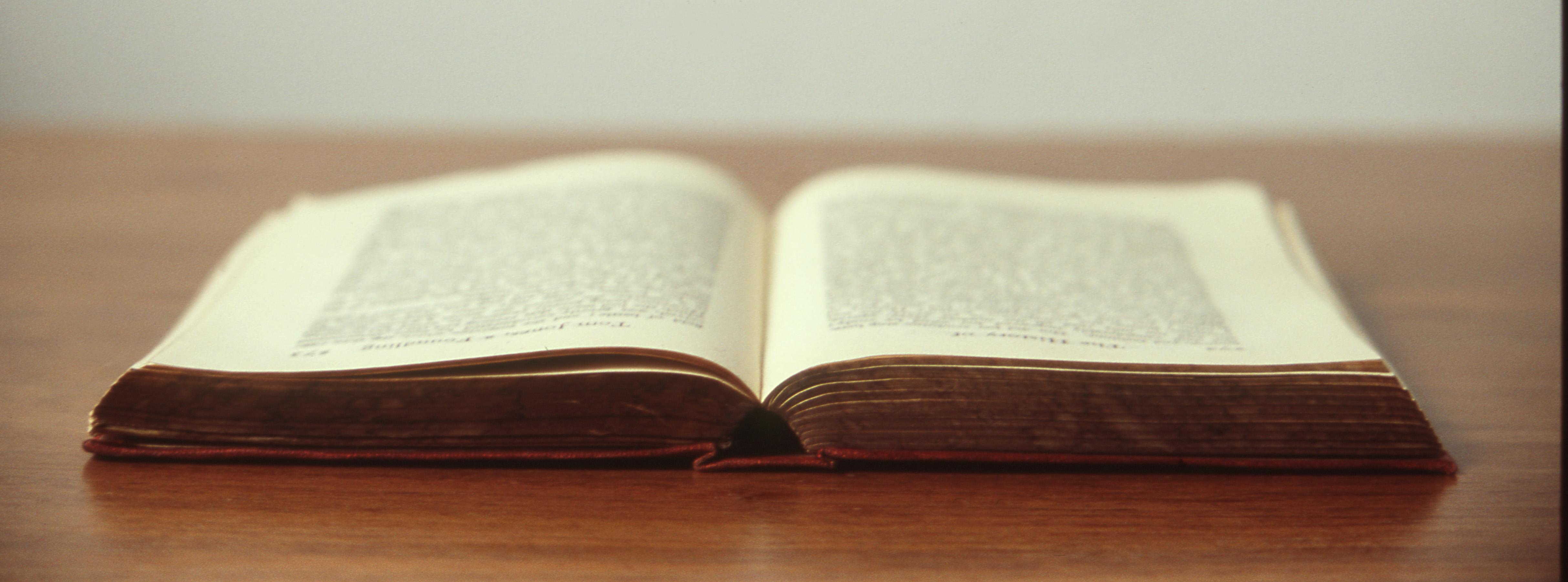 martingala e opzioni binarie libri per neofiti