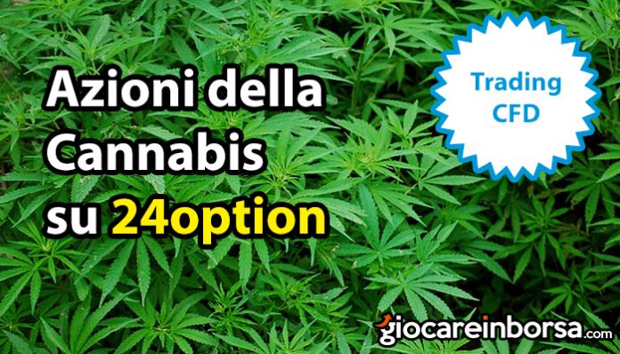 Azioni della Cannabis su 24option, disponibili per il trading online