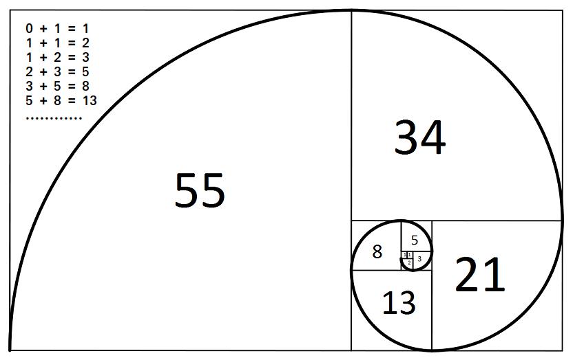 La versione grafica della sequenza di Fibonacci