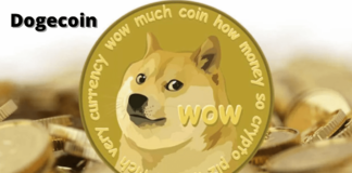 Dogecoin, cos'è, come funziona